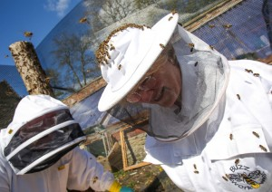 East Lancashire Beekeepers